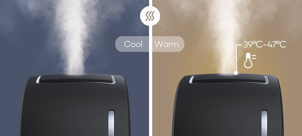 Cool Mist vs. Warm Mist